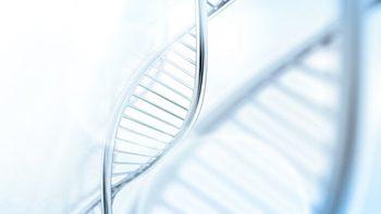 genetika-DNA