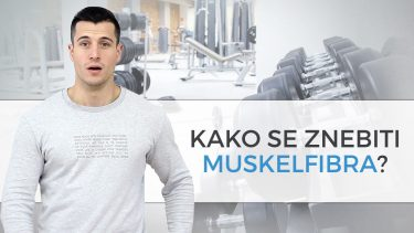 pp-blog-muskelfiber