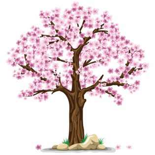predovulacijska faza - pomlad