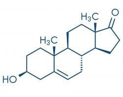 progesteron formula