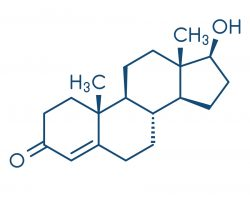 testosteron formula