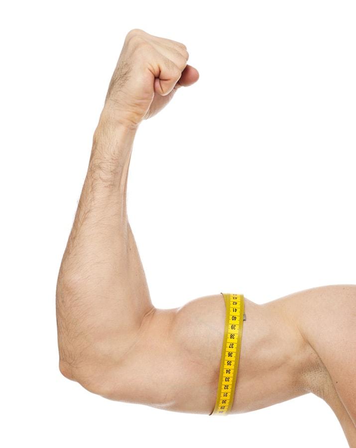 ali trening z utežmi pospeši rast mišic