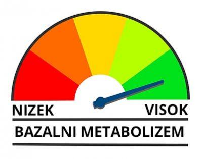 bazalni metabolizem