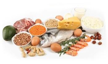 uživaj več beljakovin