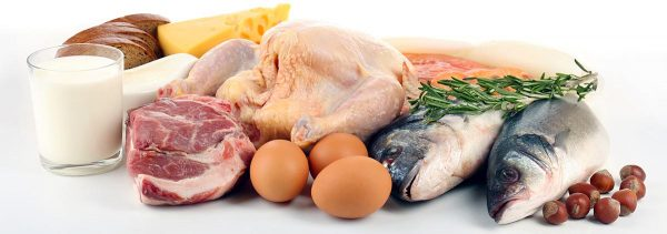 beljakovinska živila