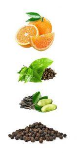 naravne sestavine za izgubo maščobe