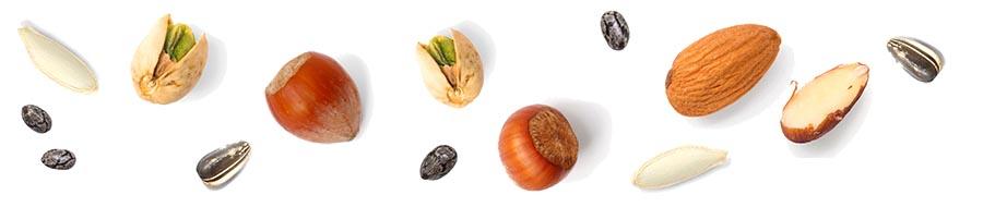 oreščki in semena