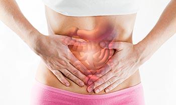 vlaknine pomagajo pri vzdrževanju ravnovesja v črevesju